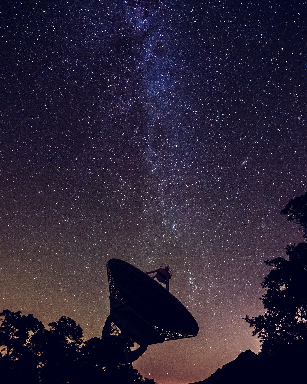silhouette of observatory dish and bushes against starry night sky