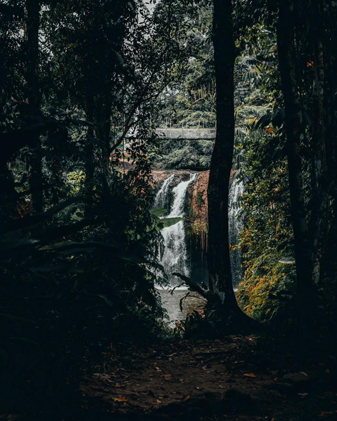 mena creek falls inside paronella park