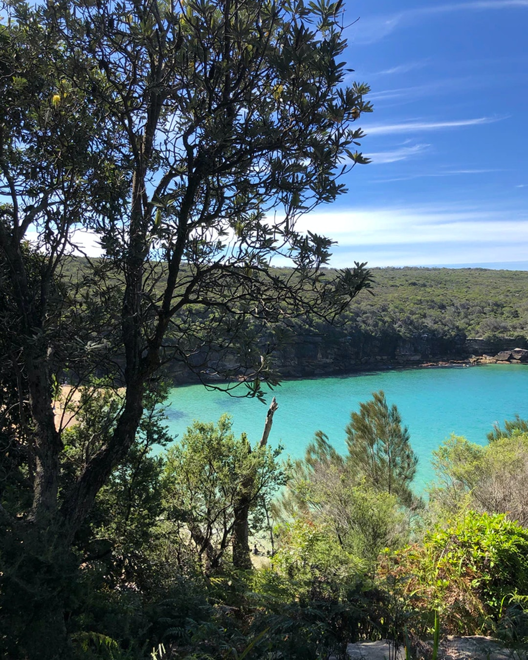 View from royal national park near Sydney of below beach with bright blue water