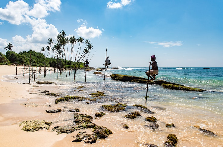 a crystal clear beach in sri lanka fringed with palm trees.