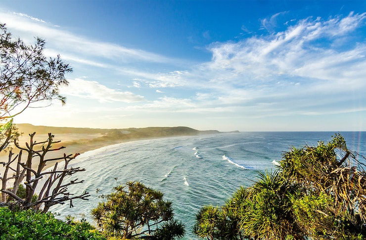 a stunning view of fraser island with a blue sky, stunning beach and clusters of greenery.