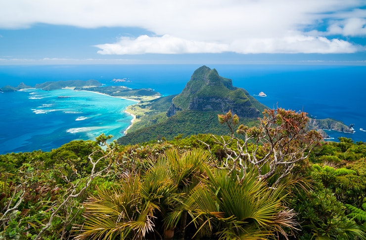 a stunning view from above of lord howe island with lush, green rainforest and brilliant blue ocean.